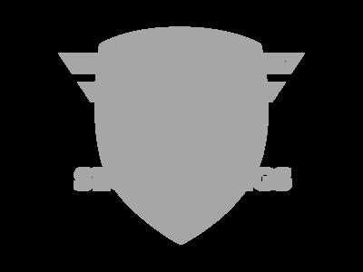 SecureWings_transparent 1